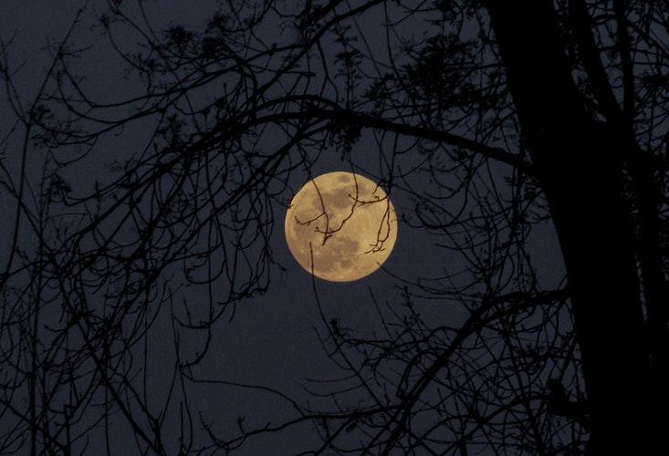 |  चांद |  Chaand  | چاند  |