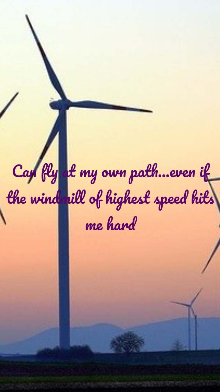 Can fly at my own path...even if the windmill of highest speed hits me hard