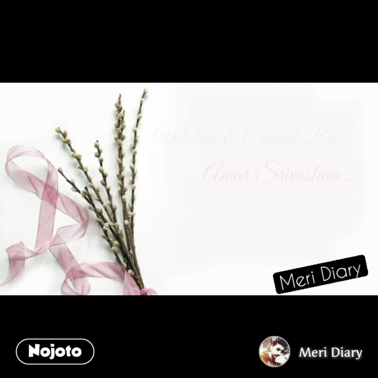 nullMeri Diary #NojotoVideo