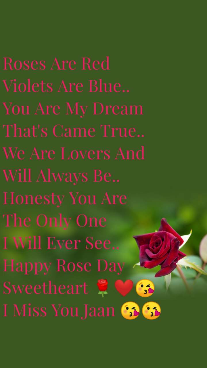 Roses Are Red Violets Are Blue.. You Are My Dream  That's Came True.. We Are Lovers And  Will Always Be..  Honesty You Are  The Only One  I Will Ever See.. Happy Rose Day  Sweetheart 🌹❤😘 I Miss You Jaan 😘😘
