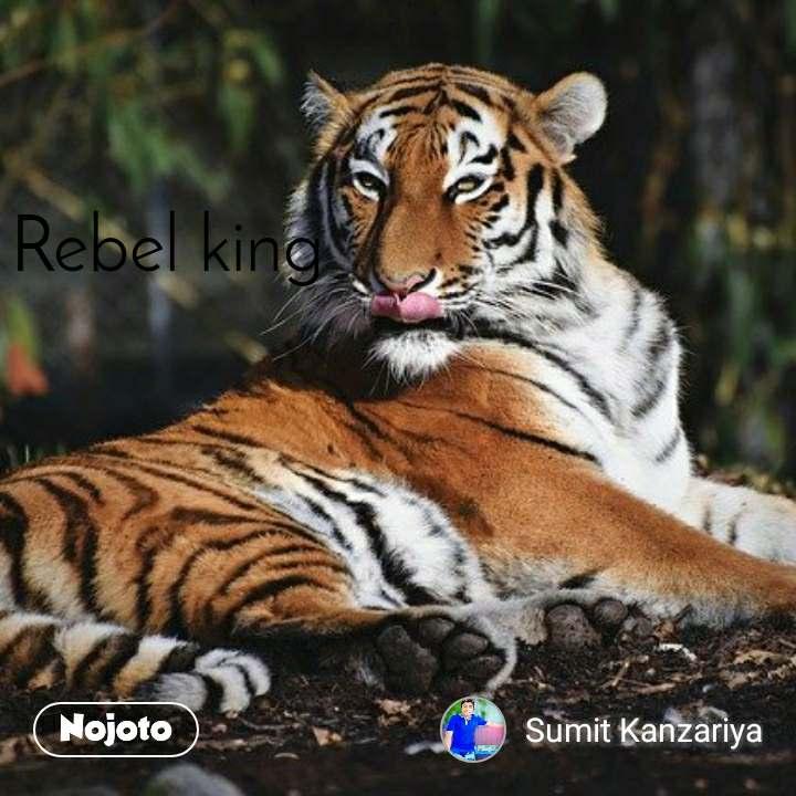 दिसंबर का महीना  Rebel king