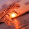 ™¶पागल¶शायर¶शु¡भ¶ मेरे जिंदा रहने के लिए',  मेरा लिखते रहना बेहद जरुरी है',  लिखते रहना मेरे लिए ऐसे है', जैसे जिंदा रहने के लिए', हवा पानी और भोजन',     ™¶§šB¶शु§भ¶