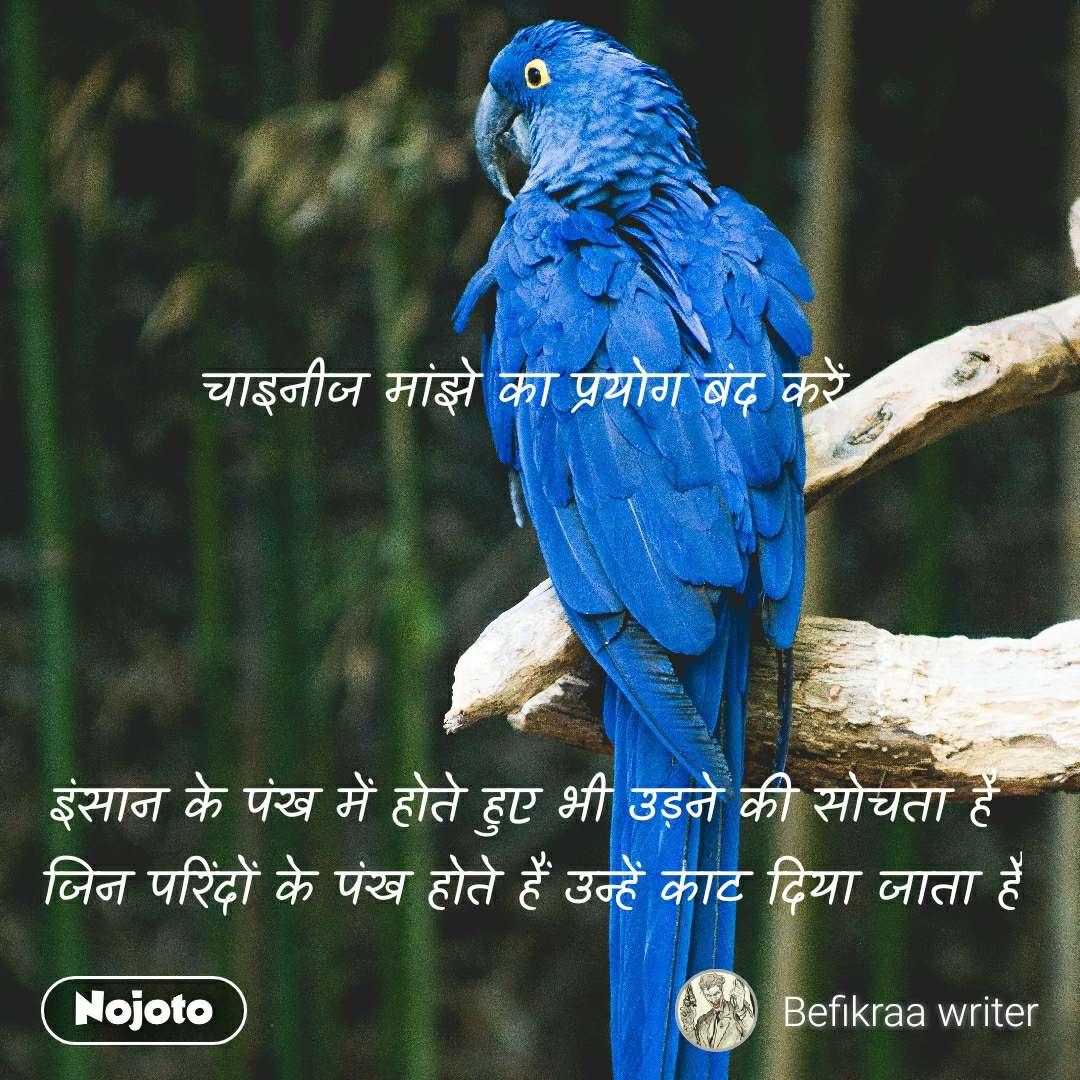 चाइनीज मांझे का प्रयोग बंद करें      इंसान के पंख में होते हुए भी उड़ने की सोचता है  जिन परिंदों के पंख होते हैं उन्हें काट दिया जाता है