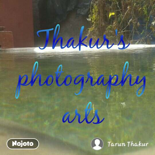 Thakur's photography arts