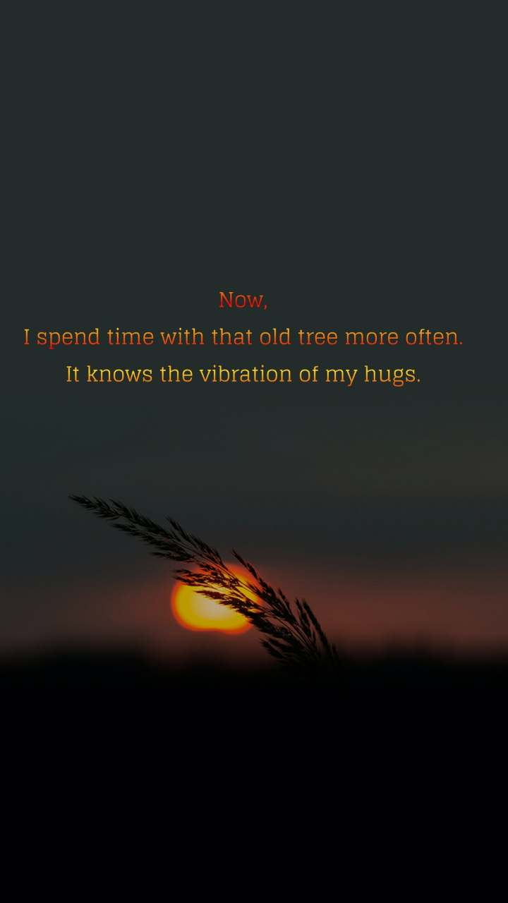 Now, I spend time with that old tree more often. It knows the vibration of my hugs.