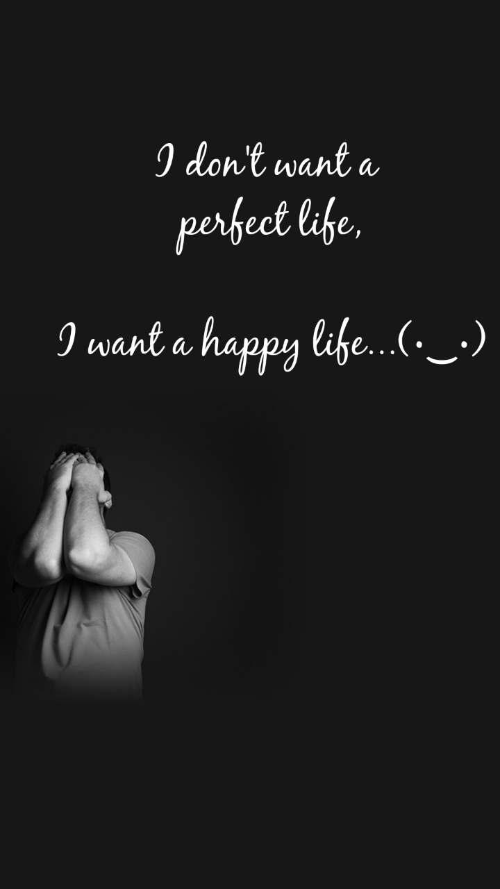I don't want a  perfect life,  I want a happy life...(•‿•)