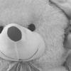 "MAHIRA KHAN16 ""Savage attitude but golden heart""🙌"