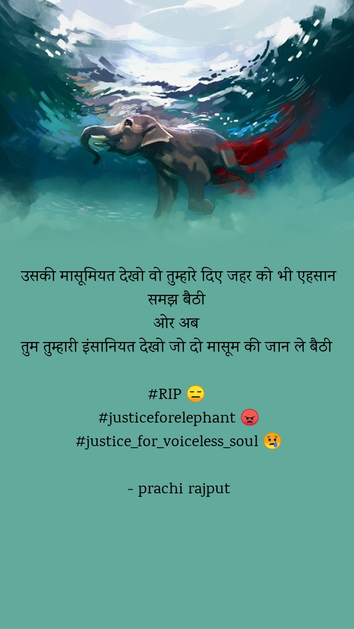 उसकी मासूमियत देखो वो तुम्हारे दिए जहर को भी एहसान समझ बैठी  ओर अब  तुम तुम्हारी इंसानियत देखो जो दो मासूम की जान ले बैठी   #RIP 😑  #justiceforelephant 😠 #justice_for_voiceless_soul 😢  - prachi rajput