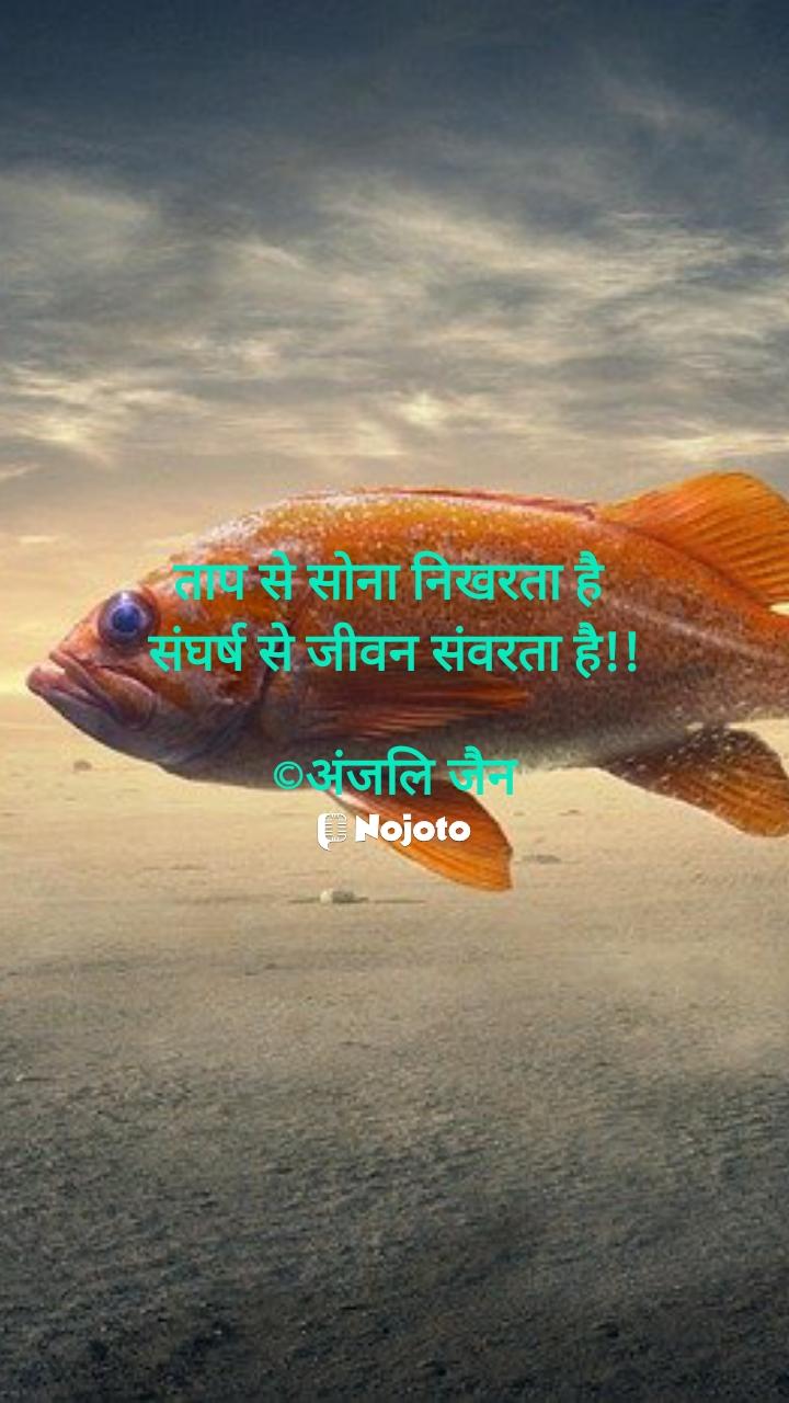 ताप से सोना निखरता है  संघर्ष से जीवन संवरता है!!  ©अंजलि जैन