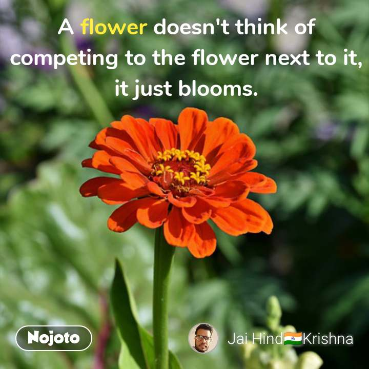 A flower doesn't think of competing to the flower next to it, it just blooms. #NojotoQuote