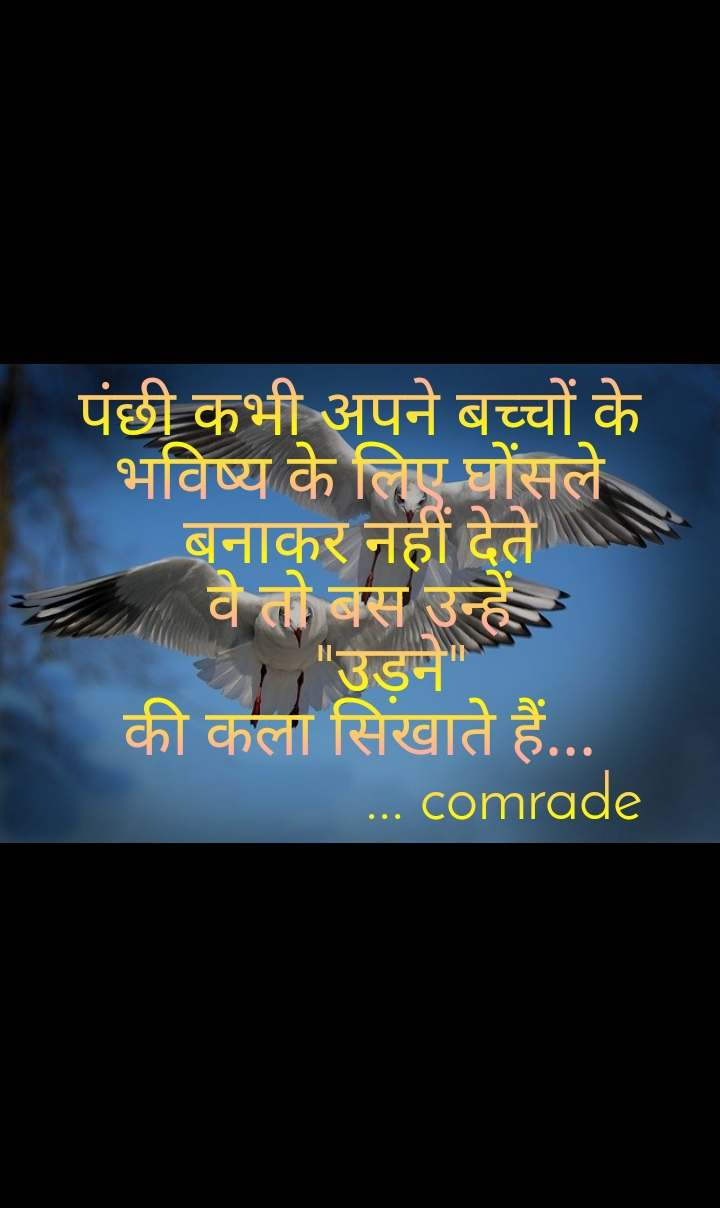 """पंछी कभी अपने बच्चों के भविष्य के लिए घोंसले बनाकर नहीं देते वे तो बस उन्हें     """"उड़ने"""" की कला सिखाते हैं...                   ... comrade"""