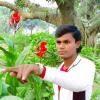 Actor- Ashok Aashiyana B. Com A/c (Hon's) R. D. S., L. S. College  Muzaffarpur Bihar Patna