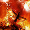 The Phoenix lives in an Imaginary world seeking to be it real...  #reborn from ashes i buried..!