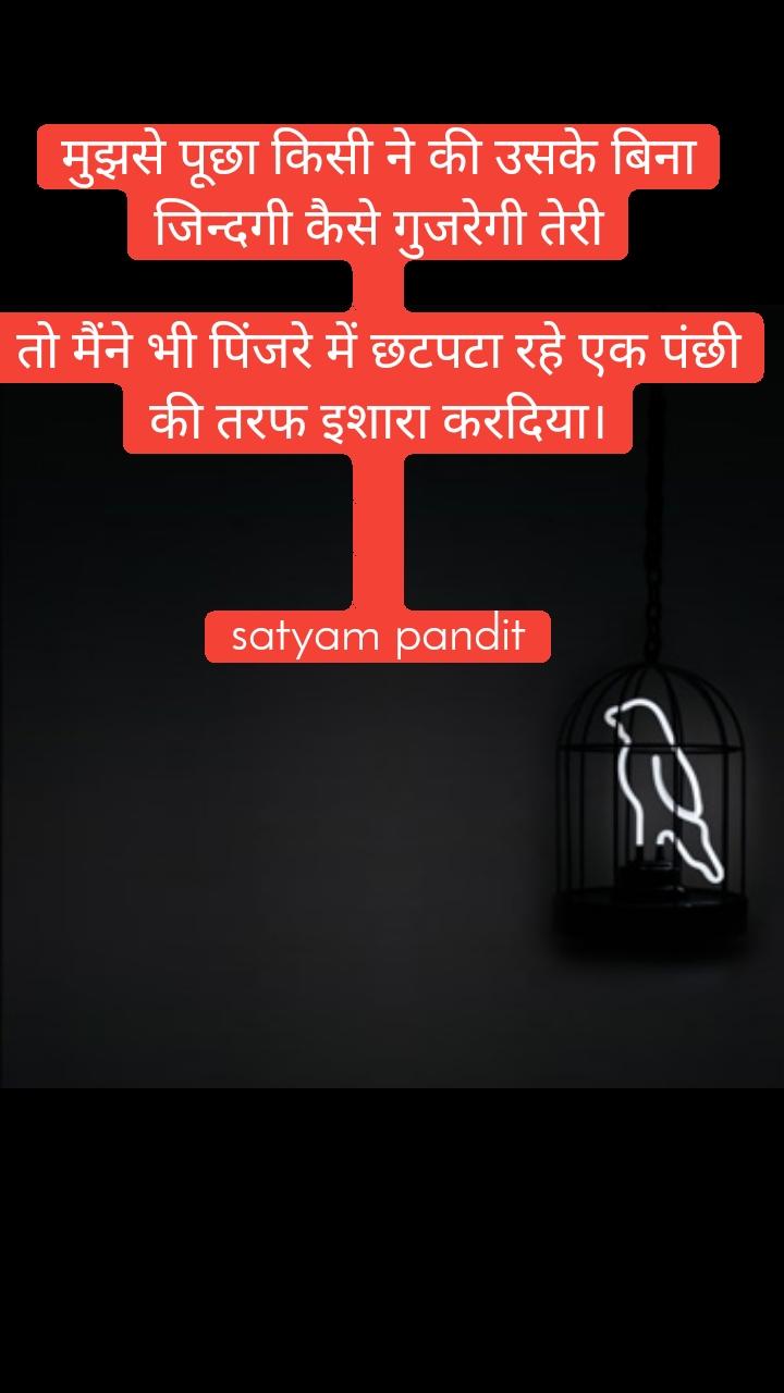 मुझसे पूछा किसी ने की उसके बिना जिन्दगी कैसे गुजरेगी तेरी  तो मैंने भी पिंजरे में छटपटा रहे एक पंछी की तरफ इशारा करदिया।    satyam pandit