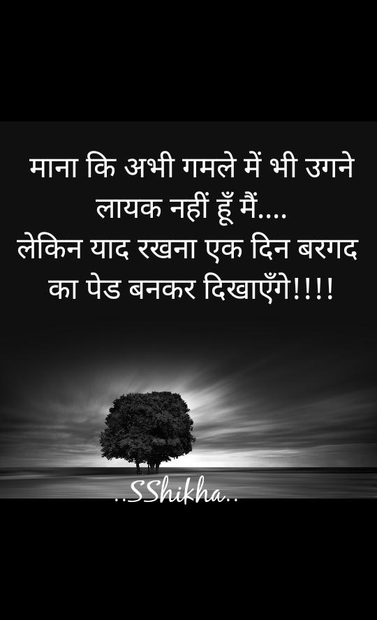 माना कि अभी गमले में भी उगने लायक नहीं हूँ मैं.... लेकिन याद रखना एक दिन बरगद  का पेड बनकर दिखाएँगे!!!!         ..SShikha..