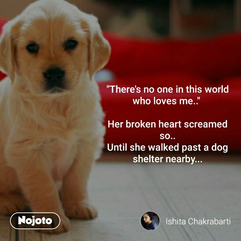 """There's no one in this world who loves me..""   Her broken heart screamed so.. Until she walked past a dog shelter nearby..."