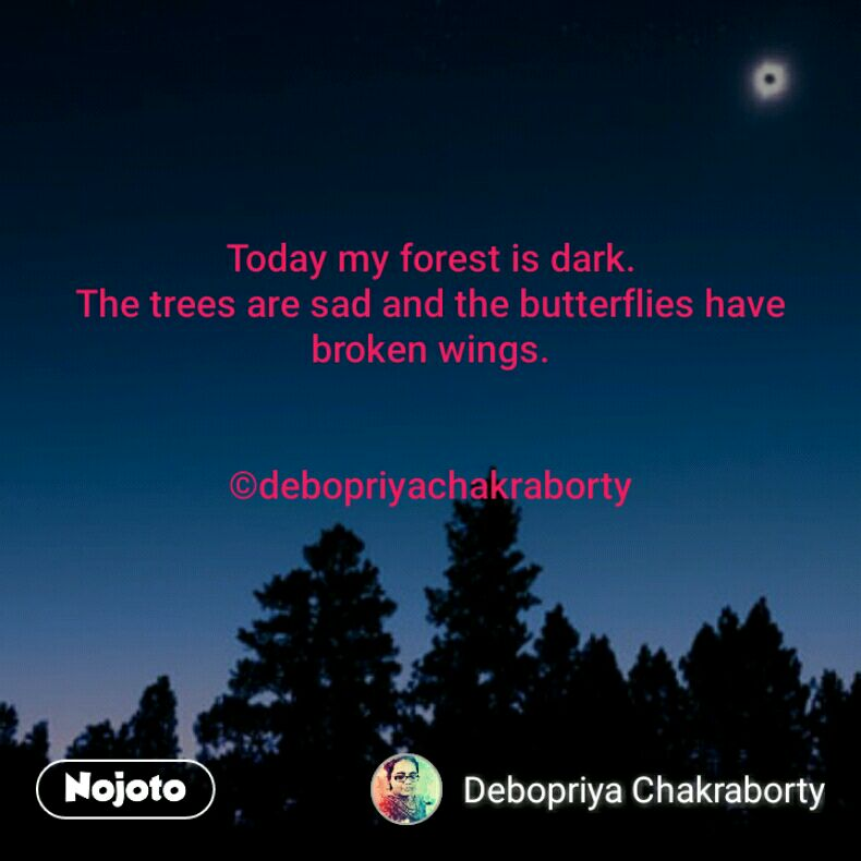 Today my forest is dark. The trees are sad and the butterflies have broken wings.   ©debopriyachakraborty