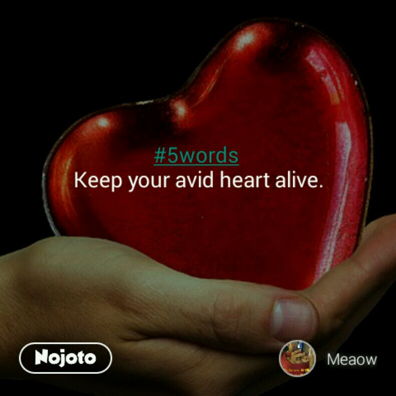 #5words  Keep your avid heart alive.