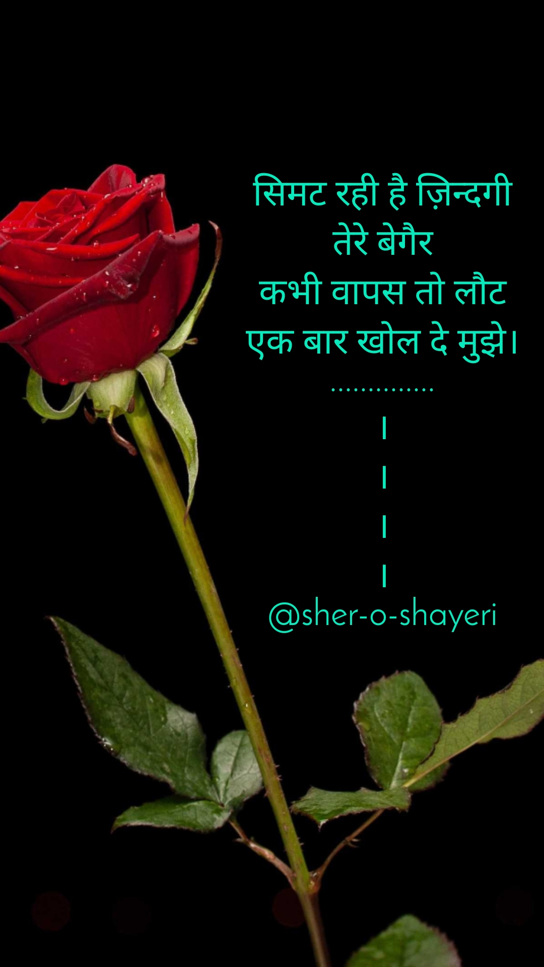 सिमट रही है ज़िन्दगी तेरे बेगैर कभी वापस तो लौट एक बार खोल दे मुझे। .............. । । । । @sher-o-shayeri