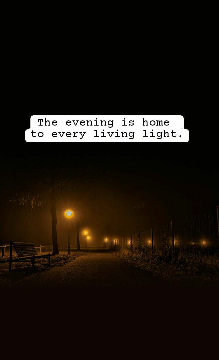 The evening is home  to every living light.