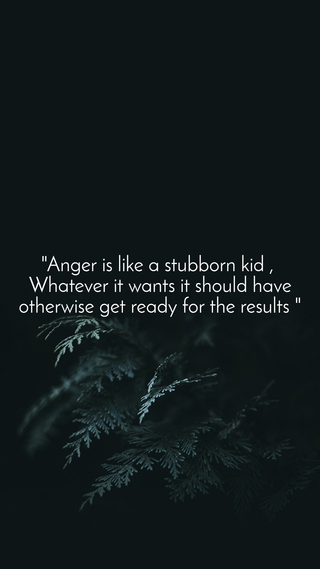 """Anger is like a stubborn kid ,  Whatever it wants it should have otherwise get ready for the results """