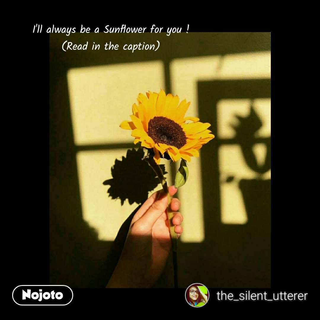 I'll always be a Sunflower for you ! (Read in the caption)