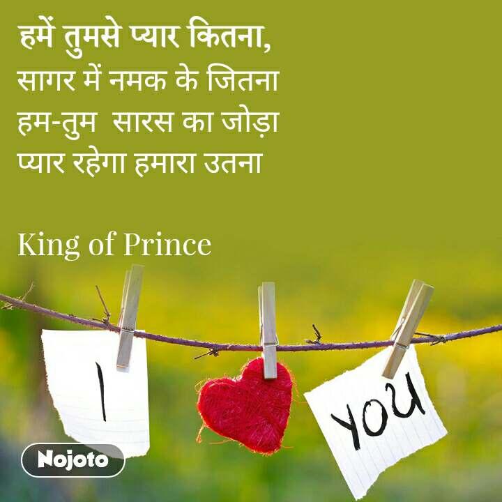 सागर में नमक के जितना  हम-तुम  सारस का जोड़ा  प्यार रहेगा हमारा उतना   King of Prince
