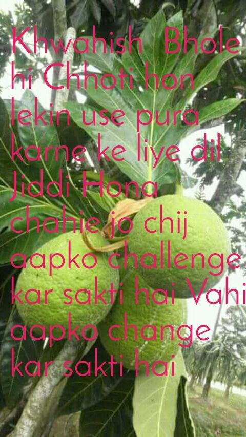 Khwahish  Bhole hi Chhoti hon lekin use pura karne ke liye dil Jiddi Hona chahie jo chij aapko challenge kar sakti hai Vahi aapko change kar sakti hai