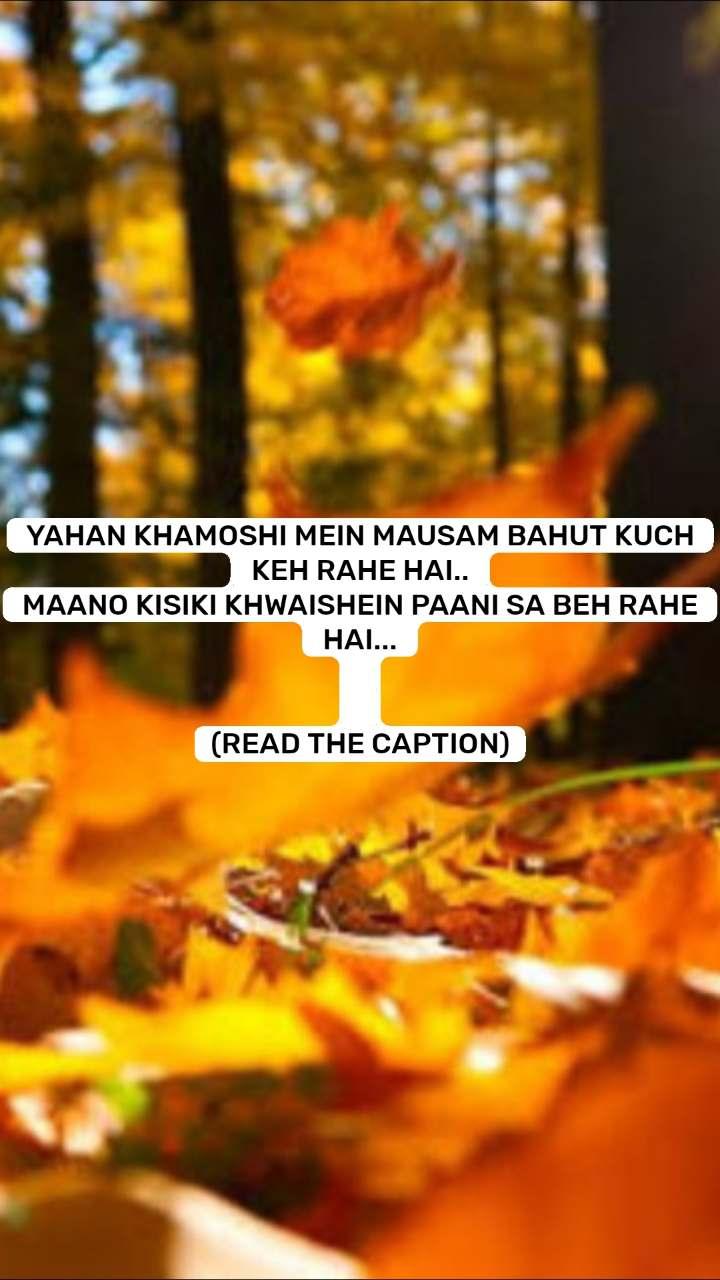 YAHAN KHAMOSHI MEIN MAUSAM BAHUT KUCH KEH RAHE HAI.. MAANO KISIKI KHWAISHEIN PAANI SA BEH RAHE HAI...   (READ THE CAPTION)
