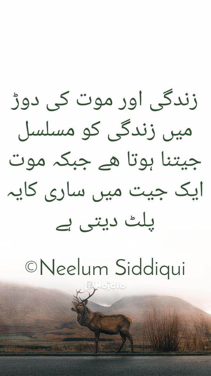زندگی اور موت کی دوڑ میں زندگی کو مسلسل جیتنا ہوتا ھے جبکہ موت ایک جیت میں ساری کایہ پلٹ دیتی ہے  ©Neelum Siddiqui