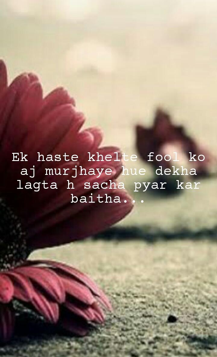 Ek haste khelte fool ko aj murjhaye hue dekha lagta h sacha pyar kar baitha...