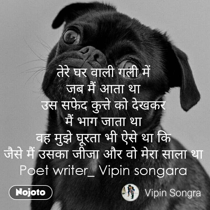तेरे घर वाली गली में जब मैं आता था उस सफेद कुत्ते को देखकर मैं भाग जाता था वह मुझे घूरता भी ऐसे था कि जैसे मैं उसका जीजा और वो मेरा साला था Poet writer_ Vipin songara