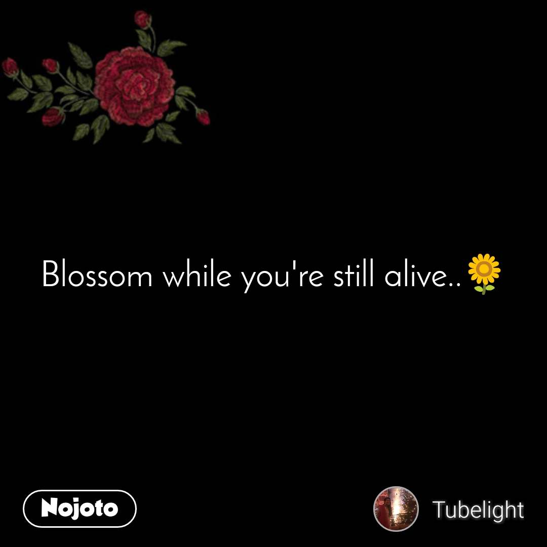 flower sms shayari quotes blossom while you re st nojoto