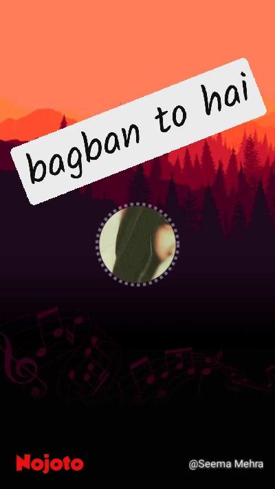 bagban to hai