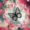 Shreya Dikshit I'm a Nature Love I am a writer 💙🍁