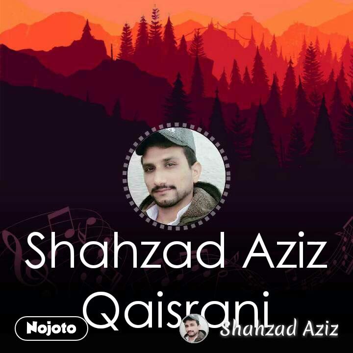 Shahzad Aziz Qaisrani