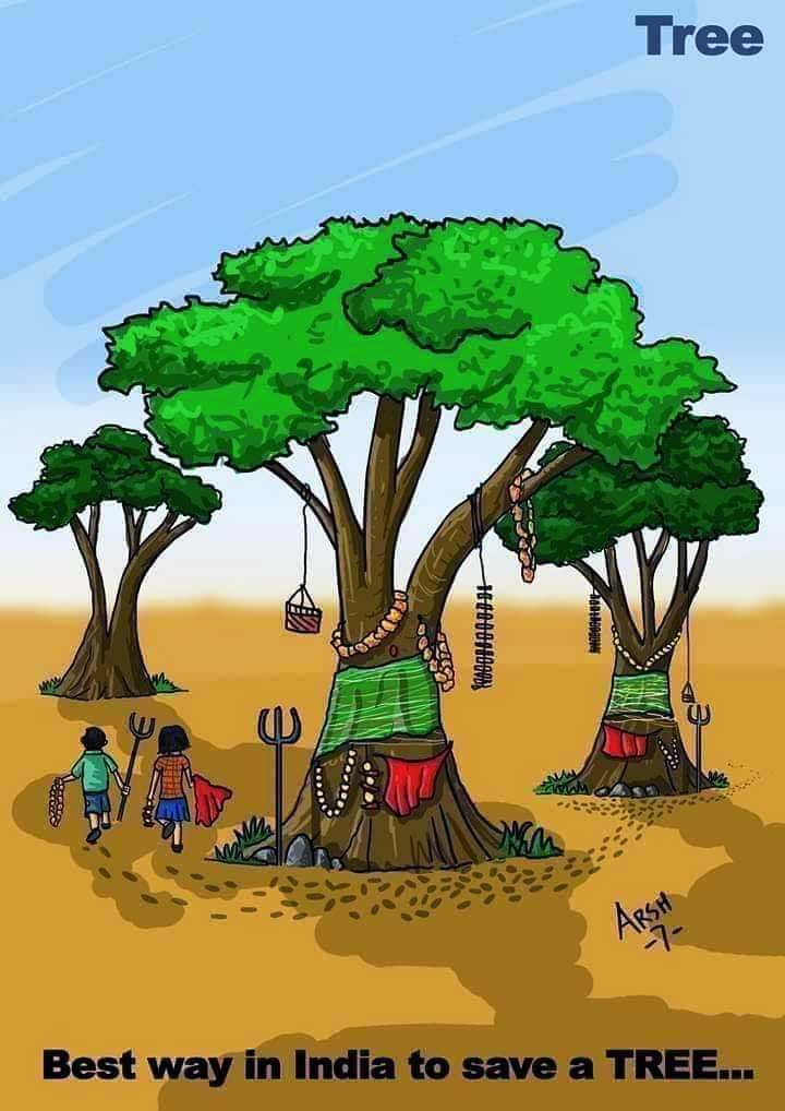 Save Environment Nojoto