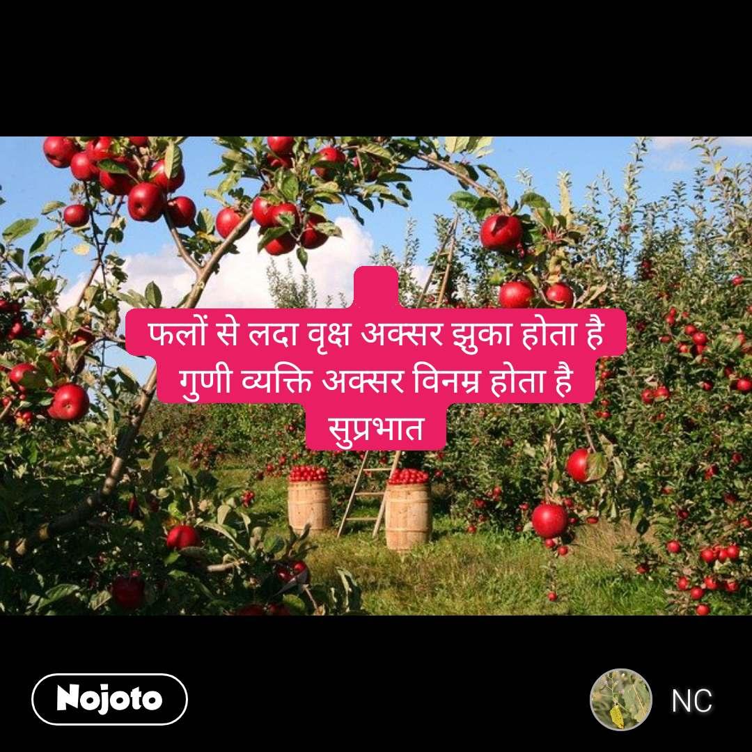 फलों से लदा वृक्ष अक्सर झुका होता है गुणी व्यक्ति अक्सर विनम्र होता है सुप्रभात
