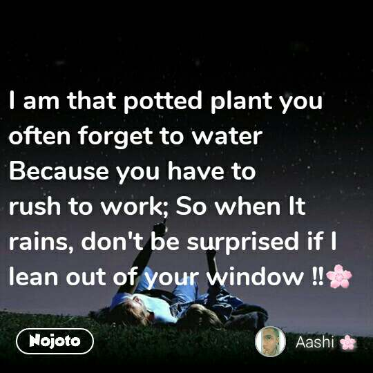 I am that potted plant you often forget to water Because you have to  rush to work; So when It rains, don't be surprised if I lean out of your window !!🌸