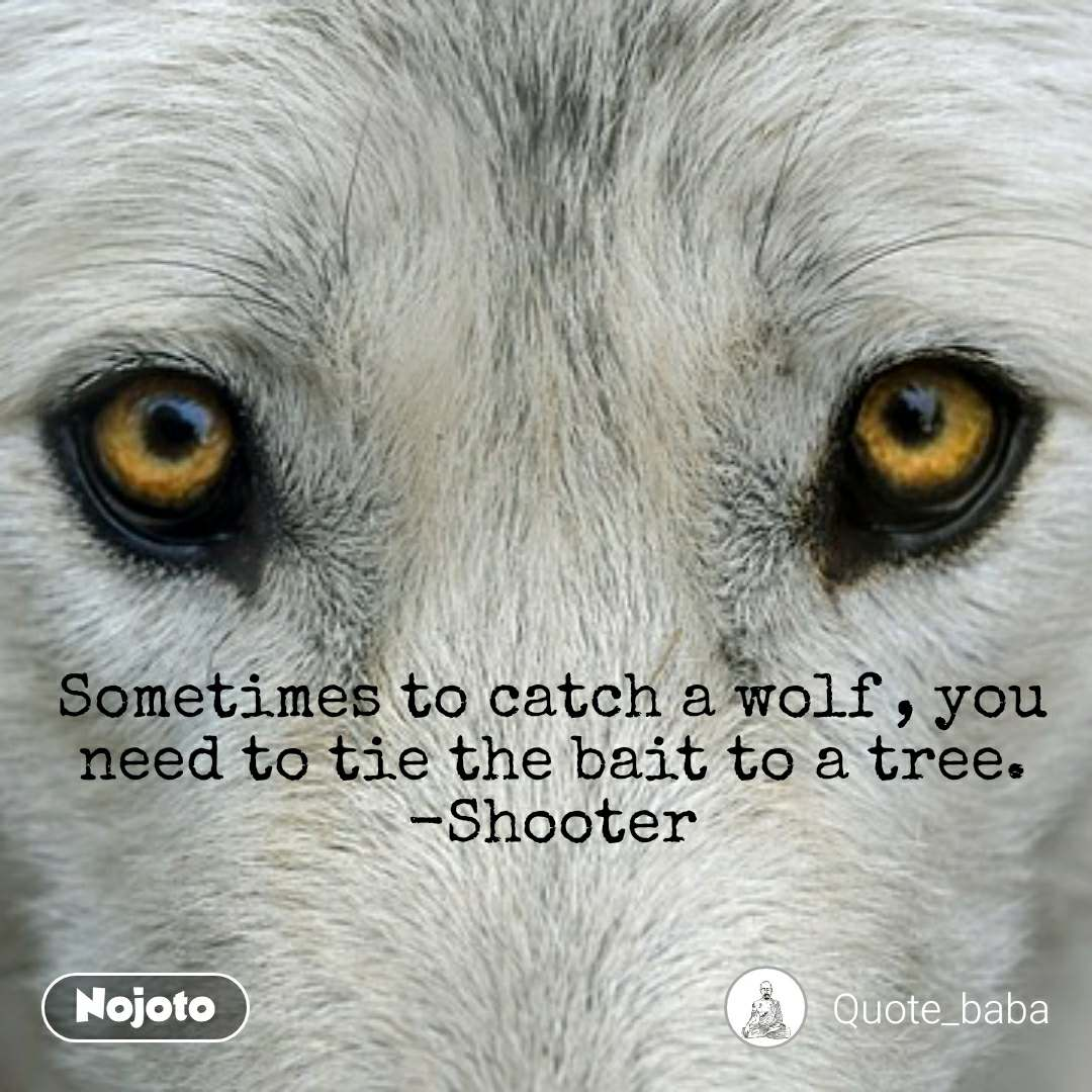 Sometimes to catch a wolf , you need to tie the bait to a tree. -Shooter
