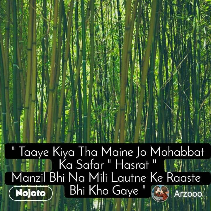 """"""" Taaye Kiya Tha Maine Jo Mohabbat Ka Safar """" Hasrat """" Manzil Bhi Na Mili Lautne Ke Raaste  Bhi Kho Gaye """""""