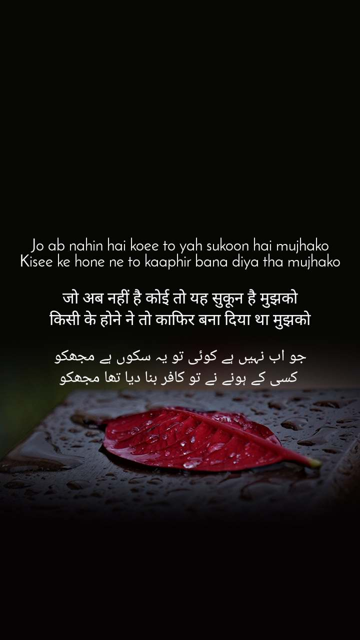 Jo ab nahin hai koee to yah sukoon hai mujhako Kisee ke hone ne to kaaphir bana diya tha mujhako  जो अब नहीं है कोई तो यह सुकून है मुझको किसी के होने ने तो काफिर बना दिया था मुझको  جو اب نہیں ہے کوئی تو یہ سکوں ہے مجھکو  کسی کے ہونے نے تو کافر بنا دیا تھا مجھکو