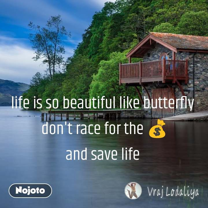life is so beautiful like butterfly  don't race for the 💰 and save life