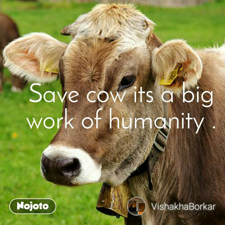 Save cow its a big work of humanity .