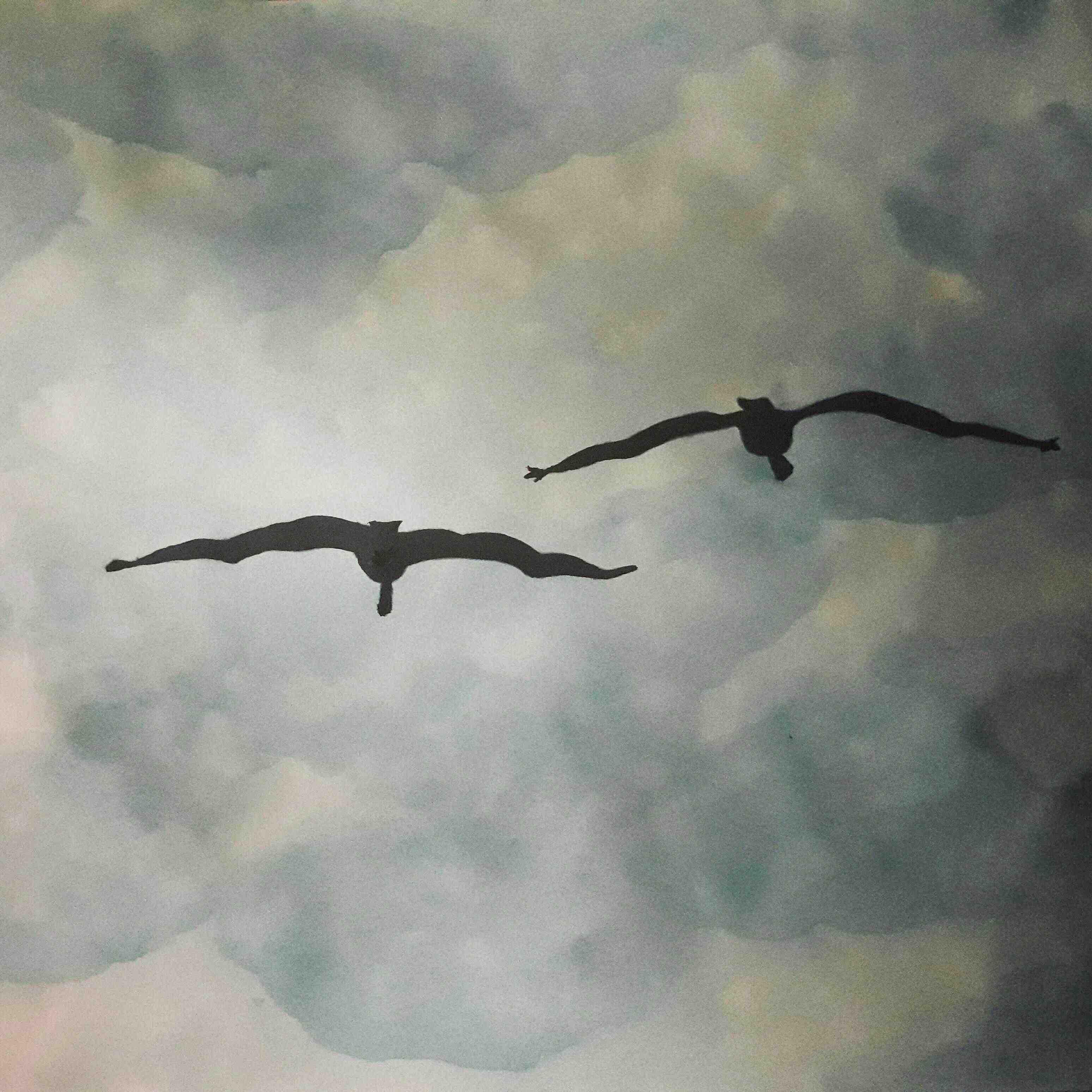 Ayesha Siddiqua Art is passion