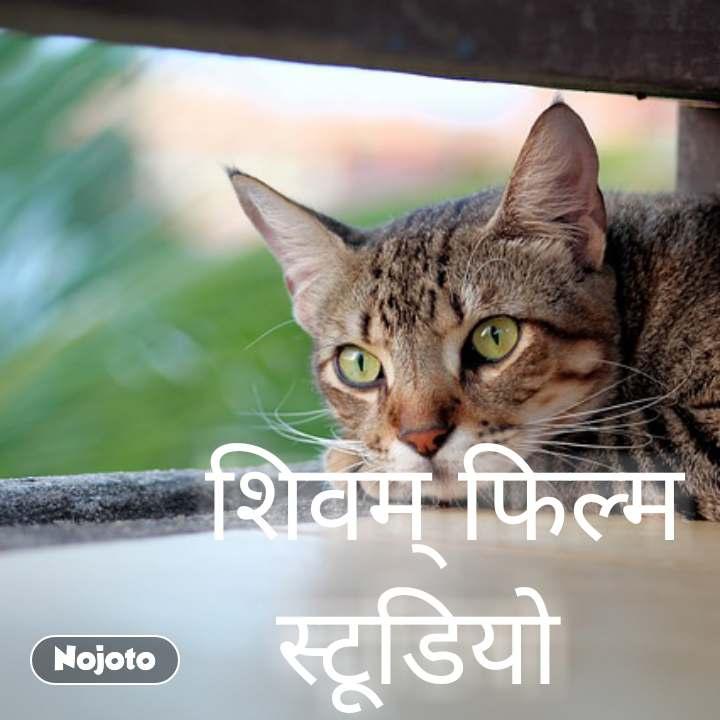 शिवम् फिल्म स्टूडियो