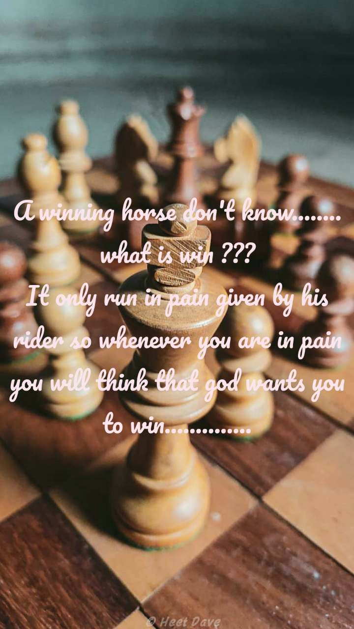 A winning horse don't know........ what is win ??? It only run in pain given by his rider so whenever you are in pain you will think that god wants you to win..............