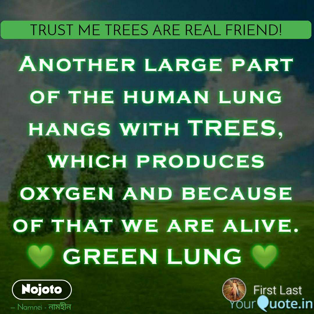 A Friend       TRUST ME TREES ARE REAL FRIEND!