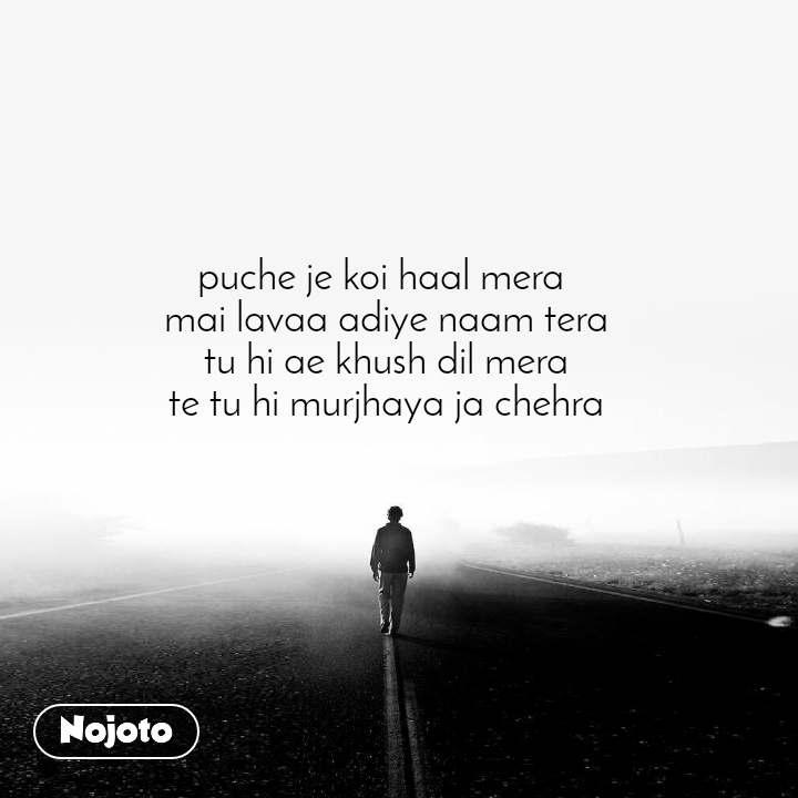puche je koi haal mera  mai lavaa adiye naam tera tu hi ae khush dil mera te tu hi murjhaya ja chehra
