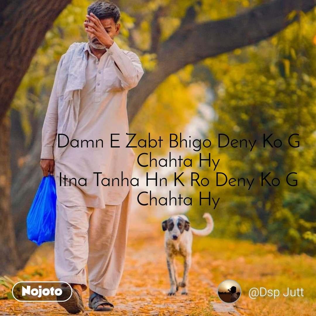 #OpenPoetry Damn E Zabt Bhigo Deny Ko G Chahta Hy Itna Tanha Hn K Ro Deny Ko G Chahta Hy